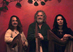 New World Gypsy String Band